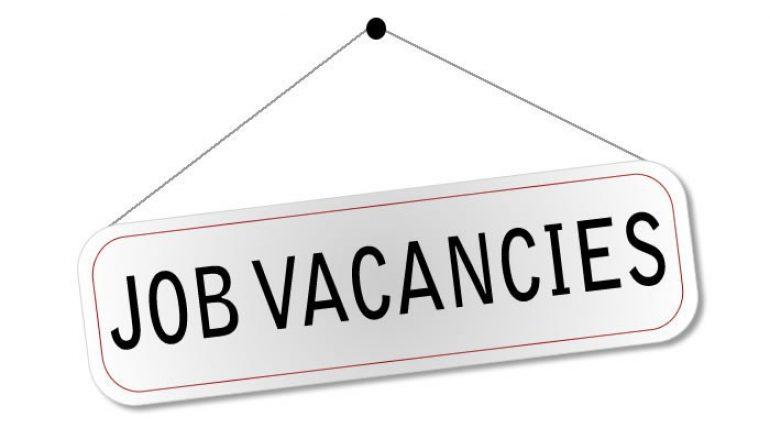 Job Vacancy1